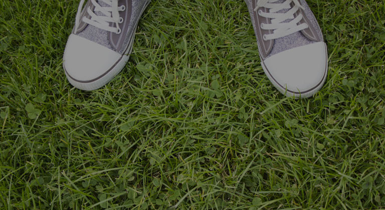 Pair of shoes standing on grass