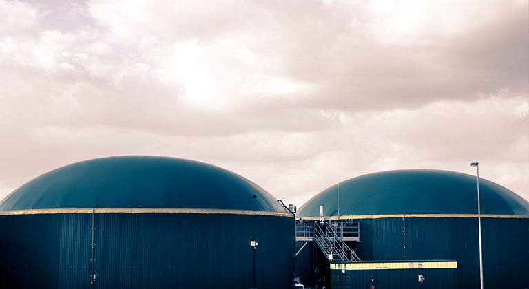 Two dome shaped biomass facilities