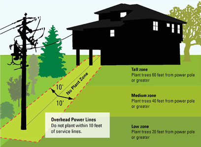 Sustainable Landscaping Xcel Energy
